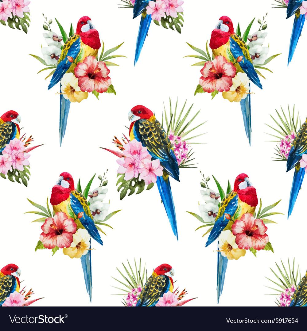 Watercolor rosella bird pattern