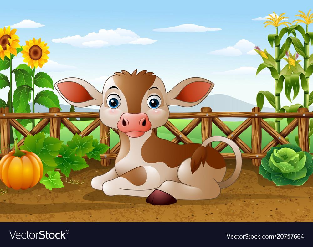 Cartoon cow sitting in the farm