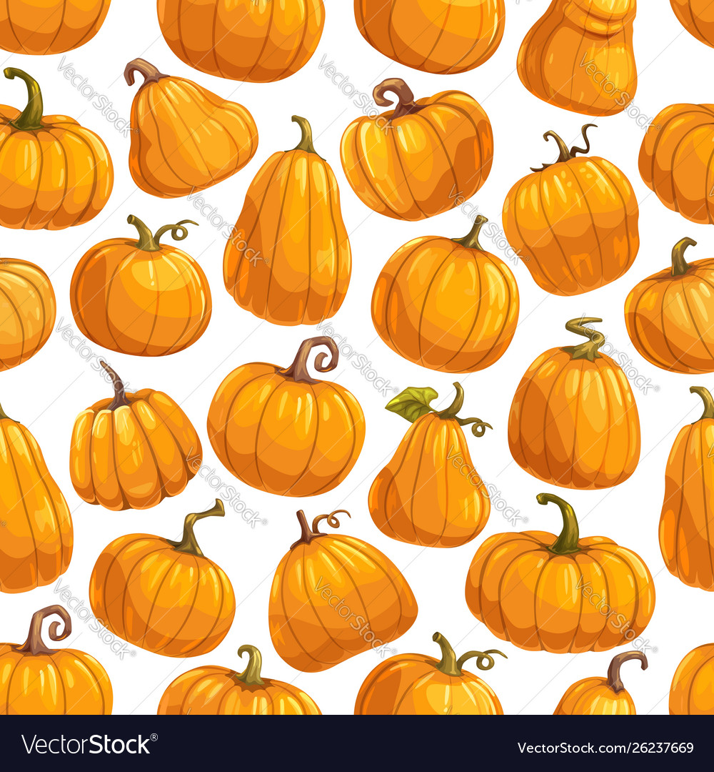 Pumpkin vegetables gourds and squashes pattern