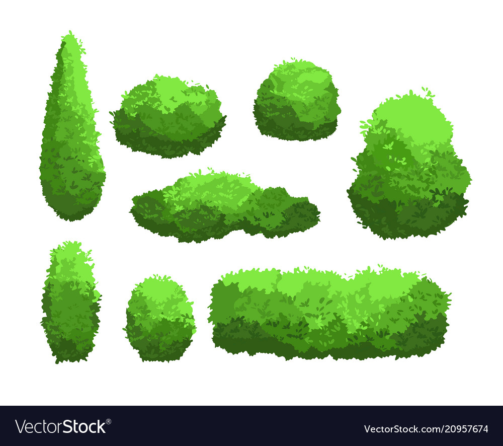 Set of garden green bushes and