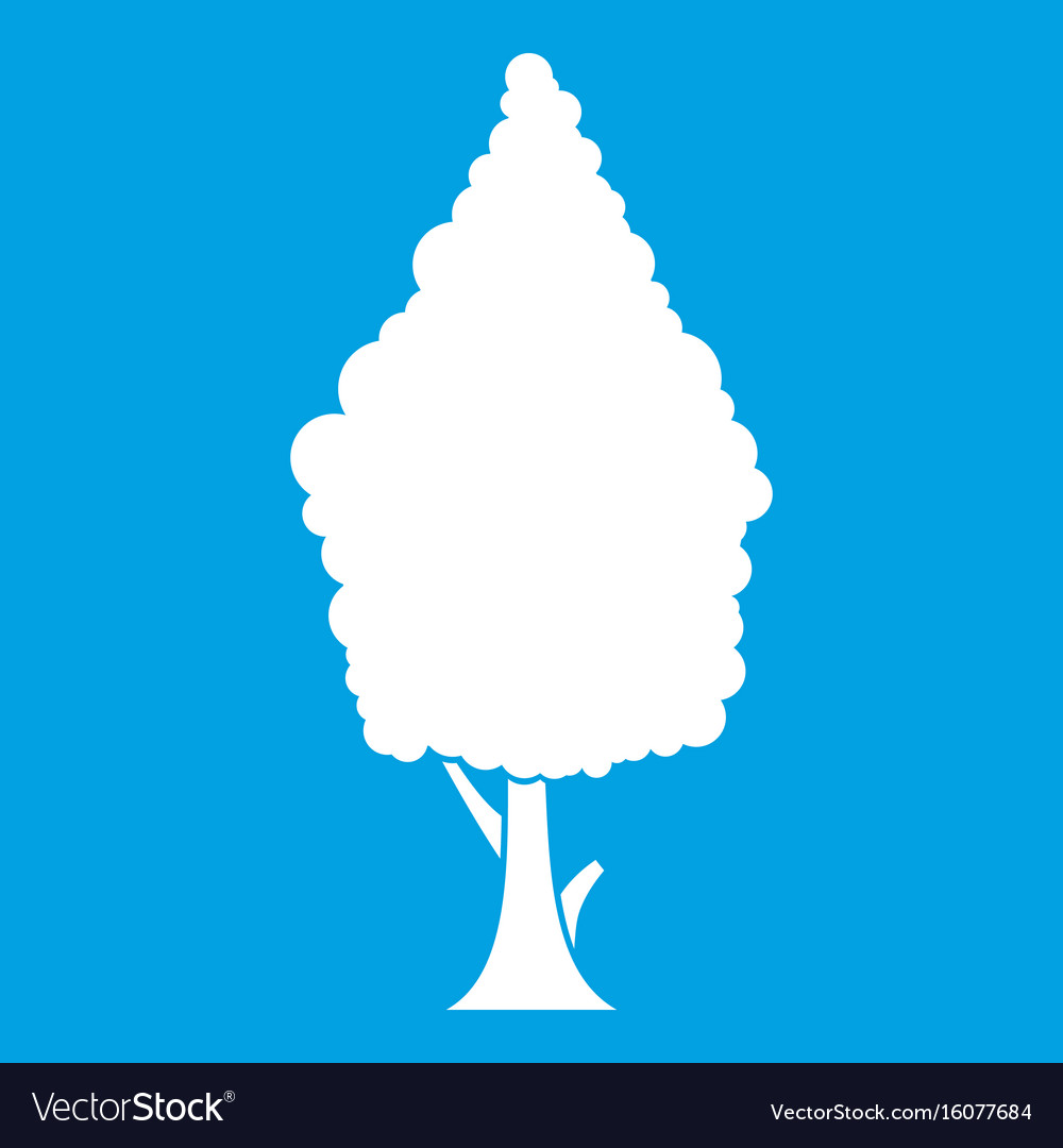 Cypress icon white vector image