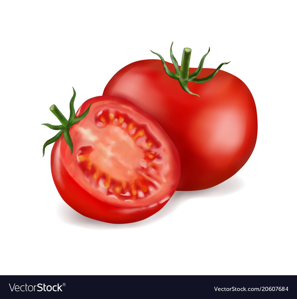 Tomato and slice isolated on white photo-realistic