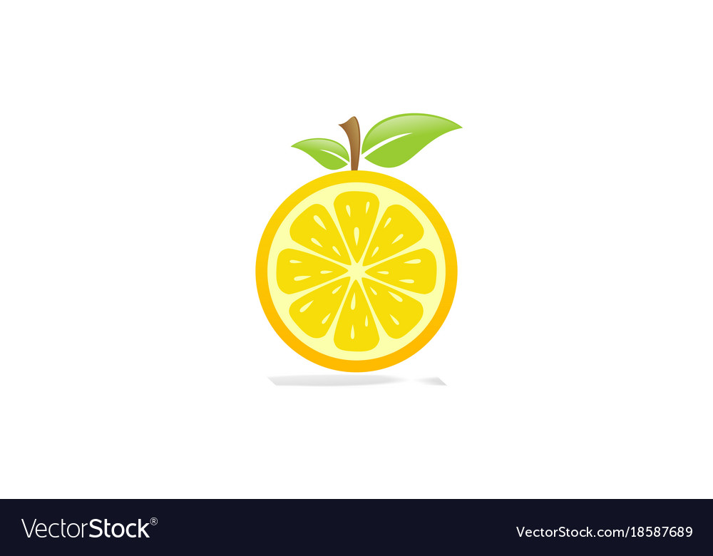 Orange Fruit Vector Orange fruit logo Roya...