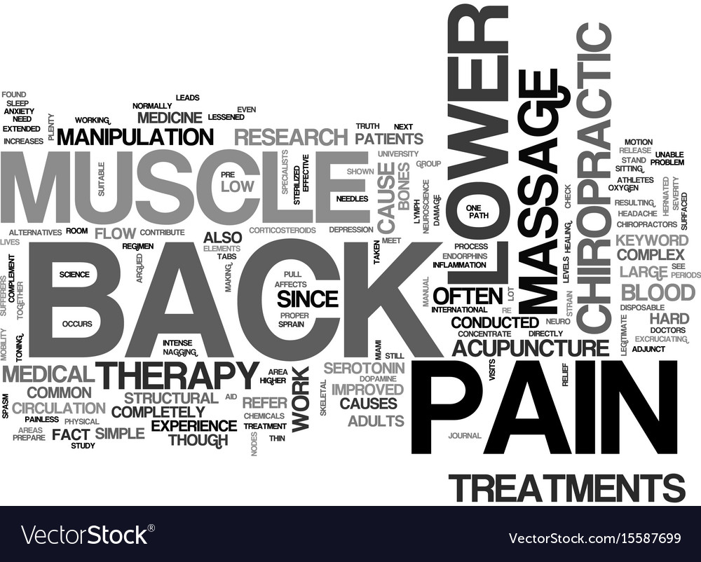 Z lower back muscle pain text word cloud concept vector image