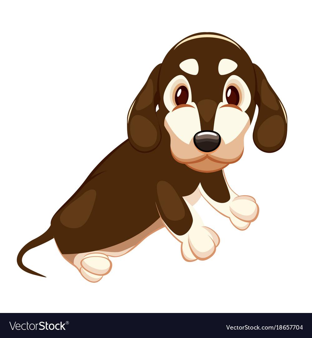 Cute dachshund with big eyes sitting on a white