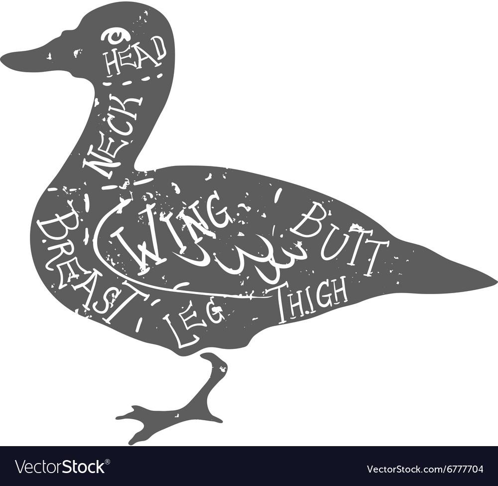White Duck Diagram - Block And Schematic Diagrams •