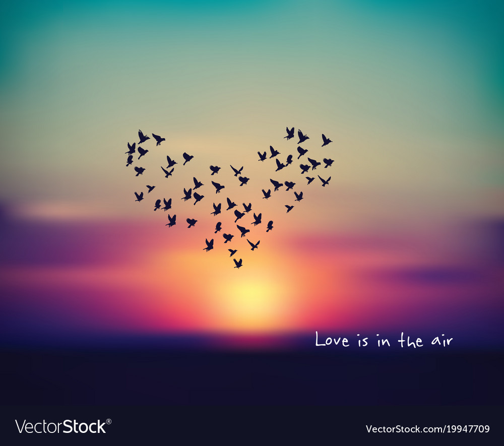Love Heart Bird Sign Card In Sky Sunset Valentines