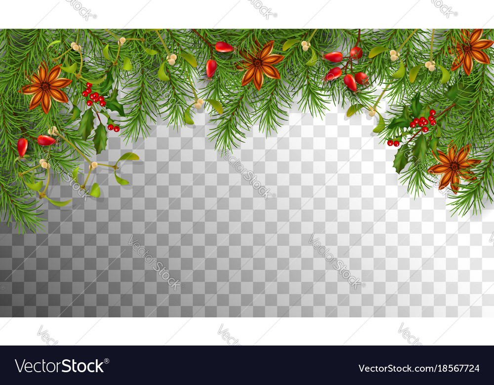 Christmas spruce border