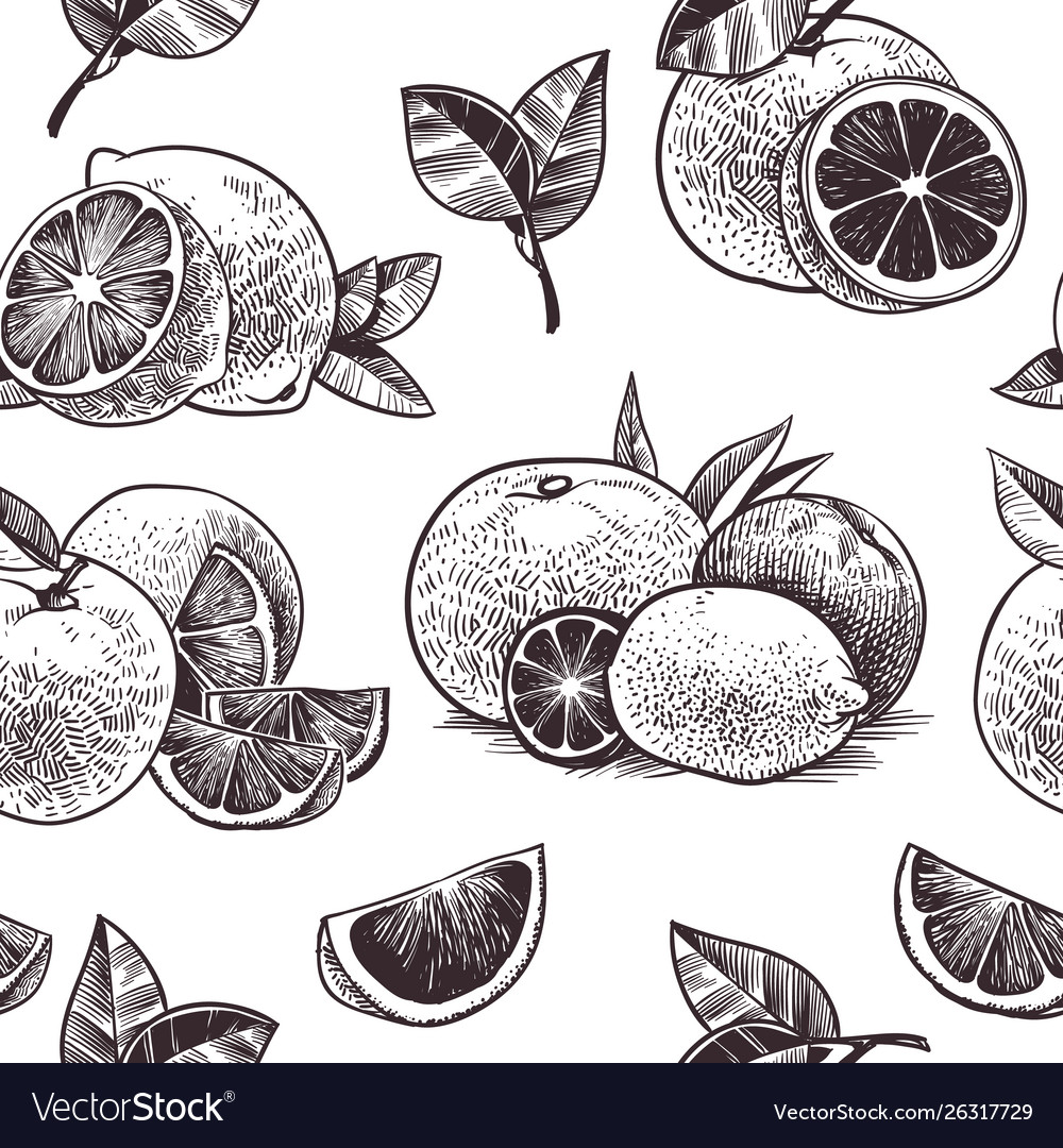 Orange fruits seamless pattern vintage citrus
