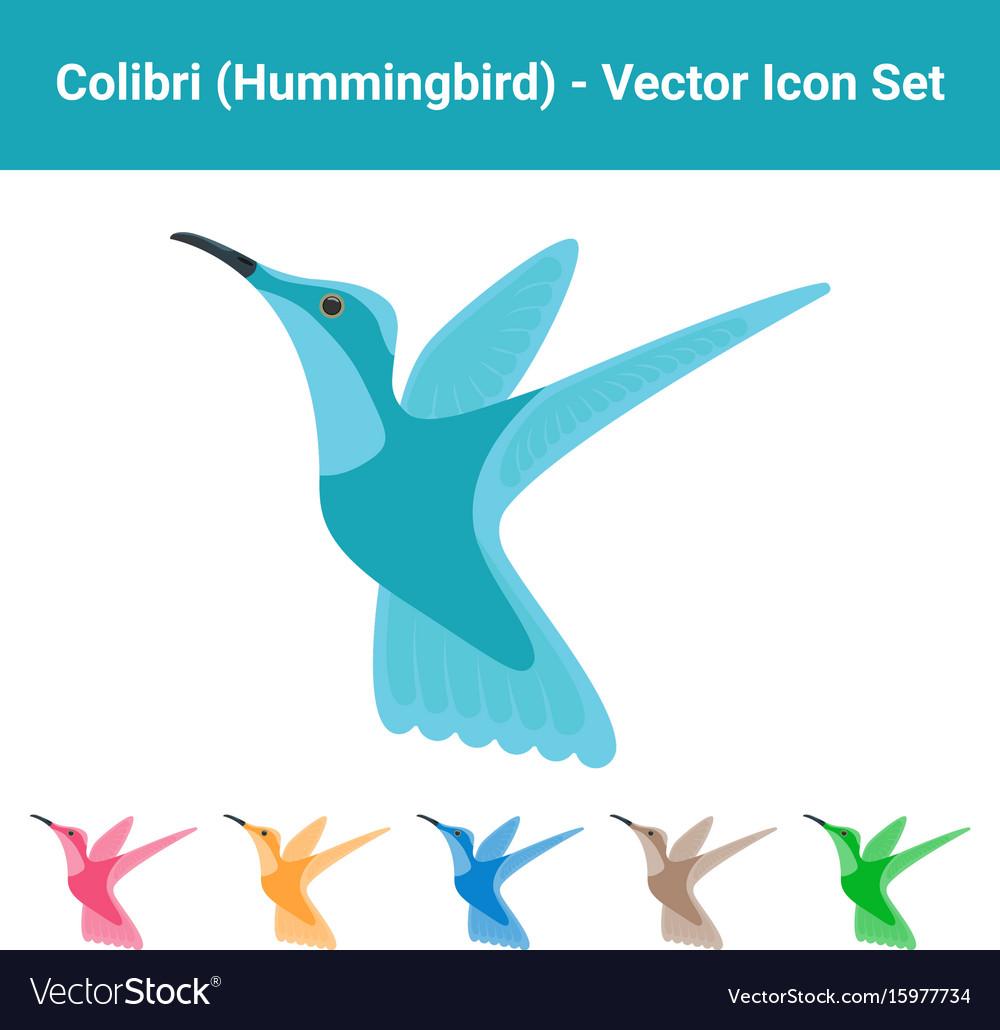 Colibri hummingbird - set of different colored