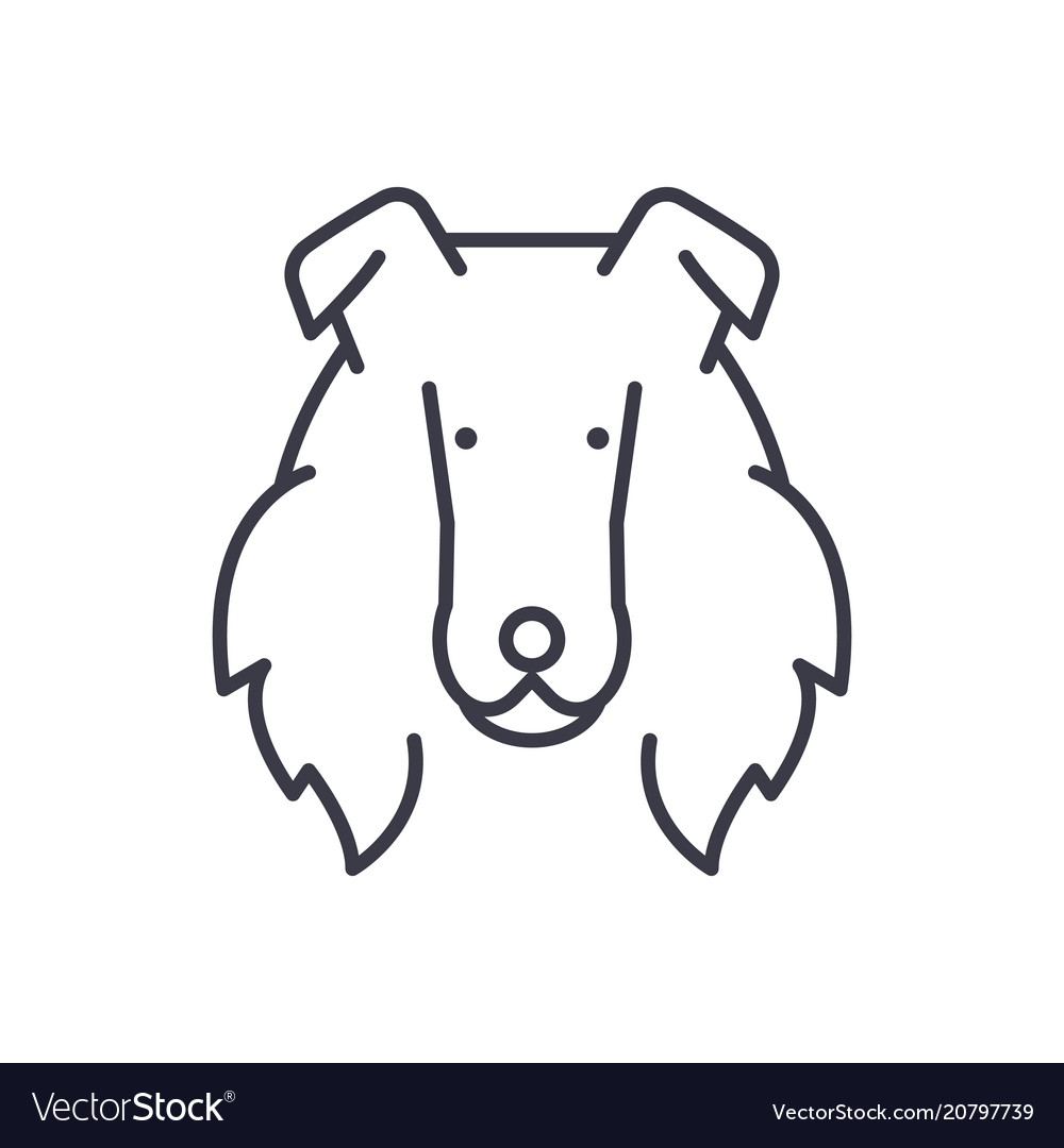 Collie line icon sign o