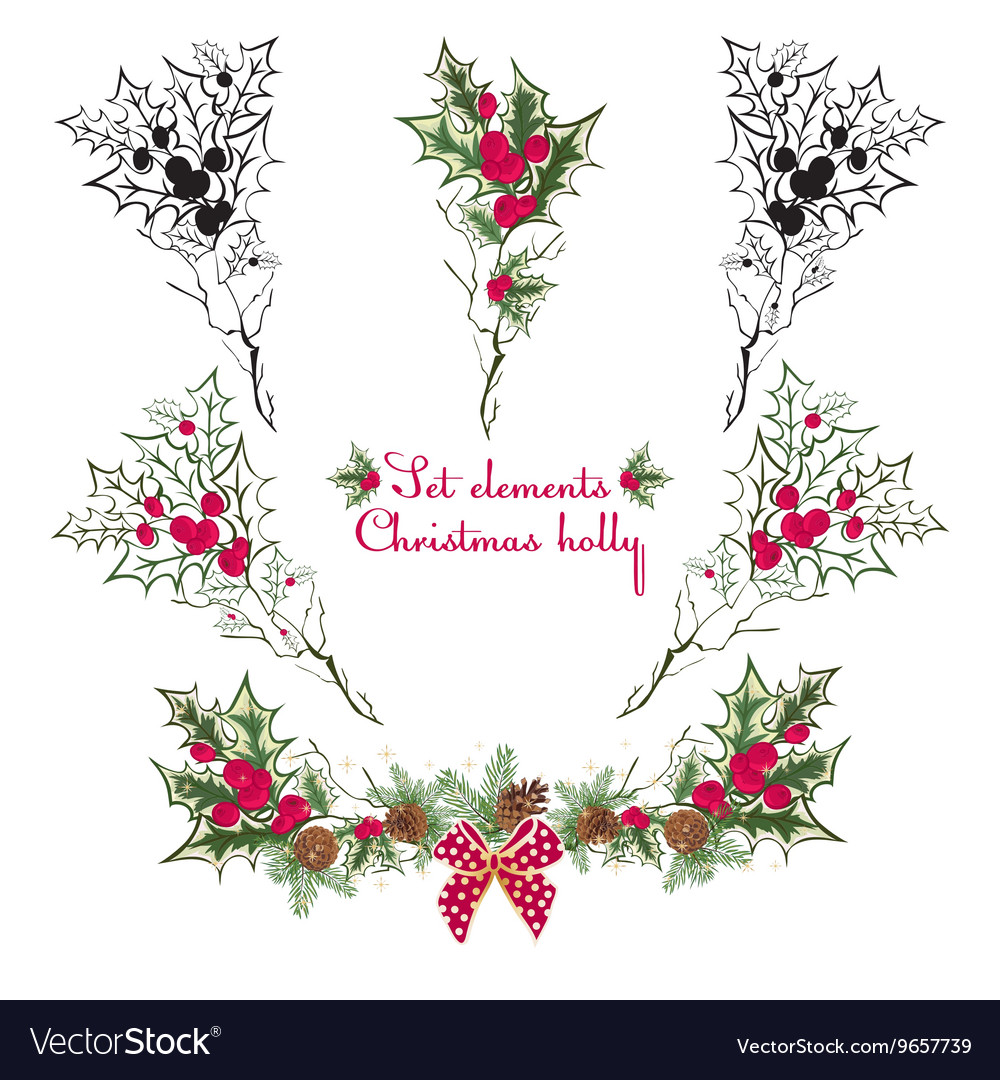 set hand drawing floral holly elements royalty free vector