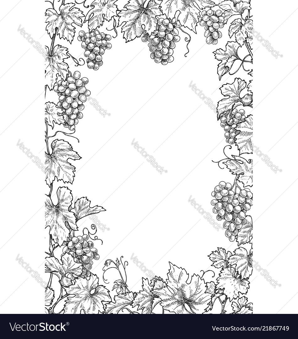 Monochrome grape branches vertical frame