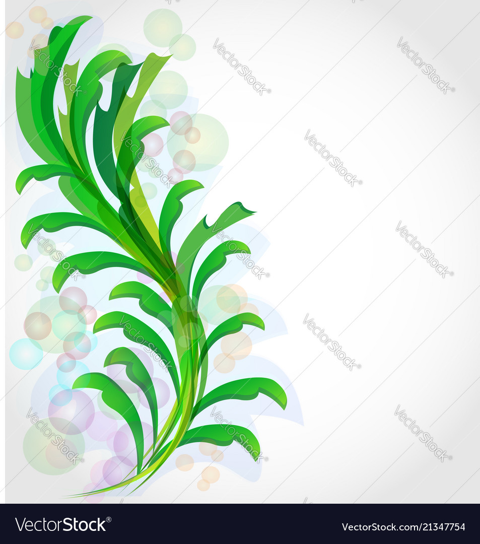 Green leaf plant background