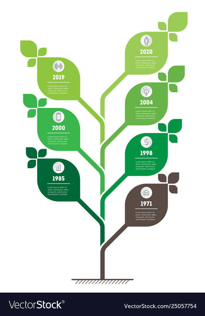 Vertical green infographics or timeline the