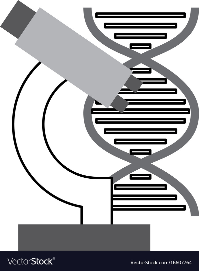 Dna molecule with microscope vector image