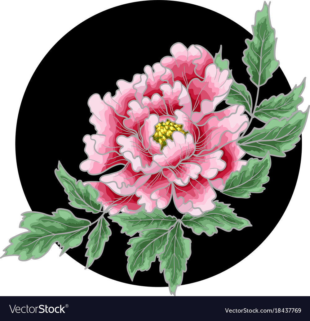 Peony Flower Of Japanese Style Royalty Free Vector Image