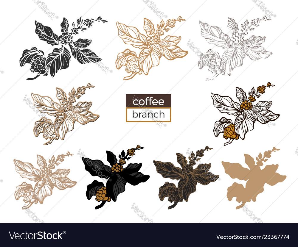 Big set coffee branch 3