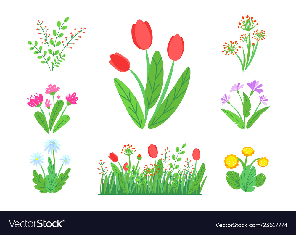 Spring garden flowers with blooming grass