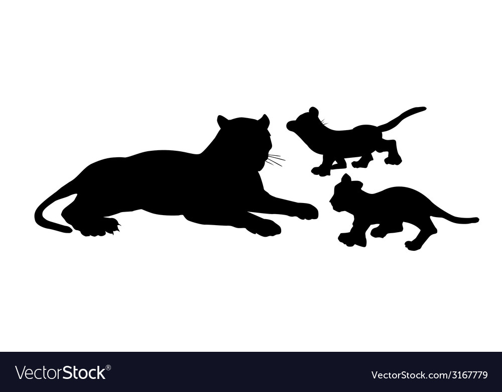 Tiger and Baby Tiger vector image