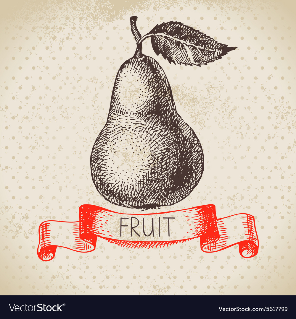 Hand drawn sketch fruit pear Eco food background