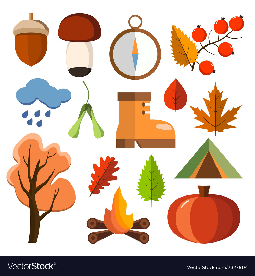 Flat forest icon set Autumn forest flat icons vector image