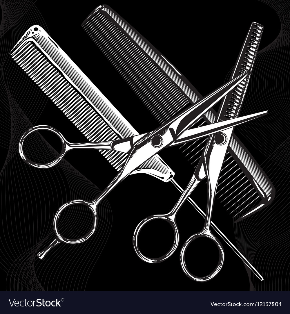 Professional tools scissors and combs vector image