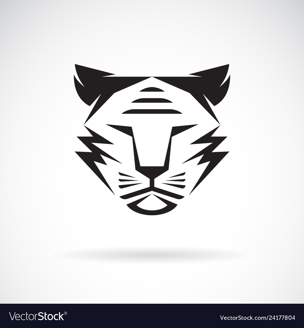 Tiger face design on white background wild