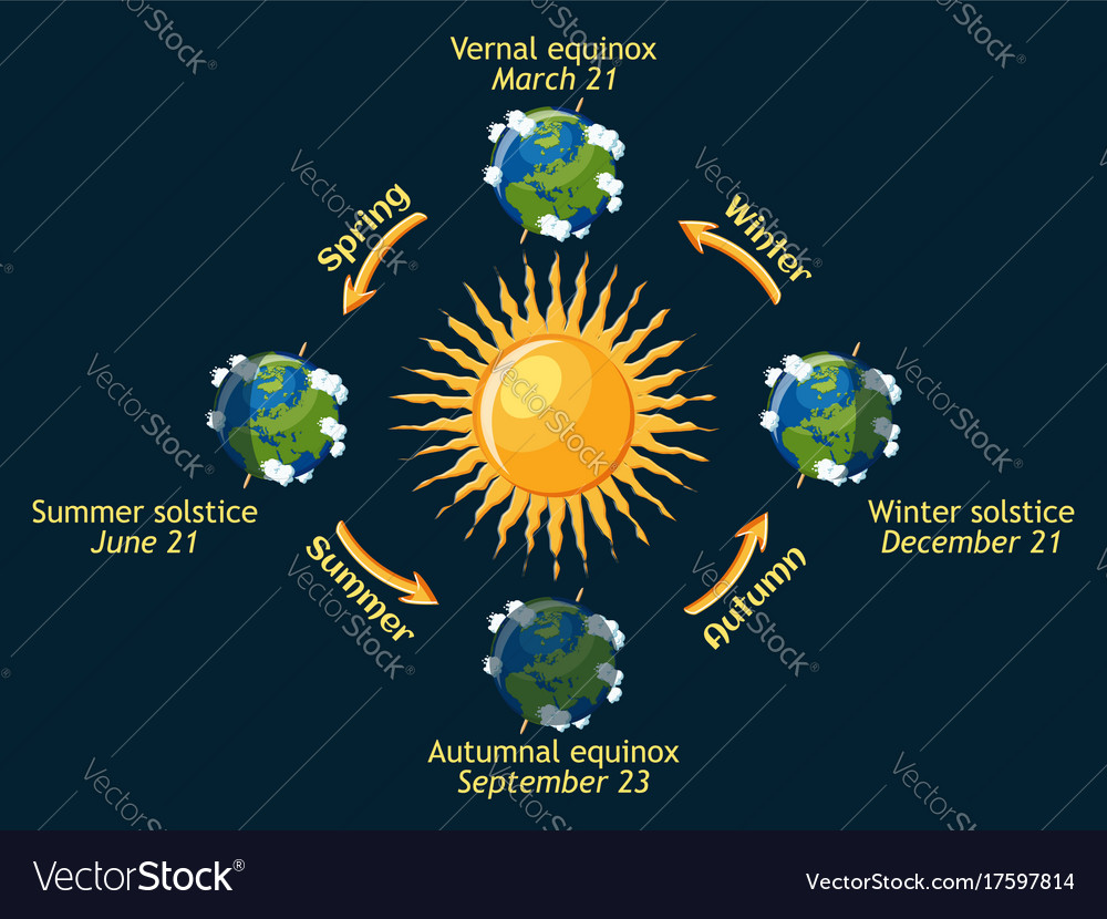 Cycle of earth seasons of the year autumnal and vector image ccuart Image collections