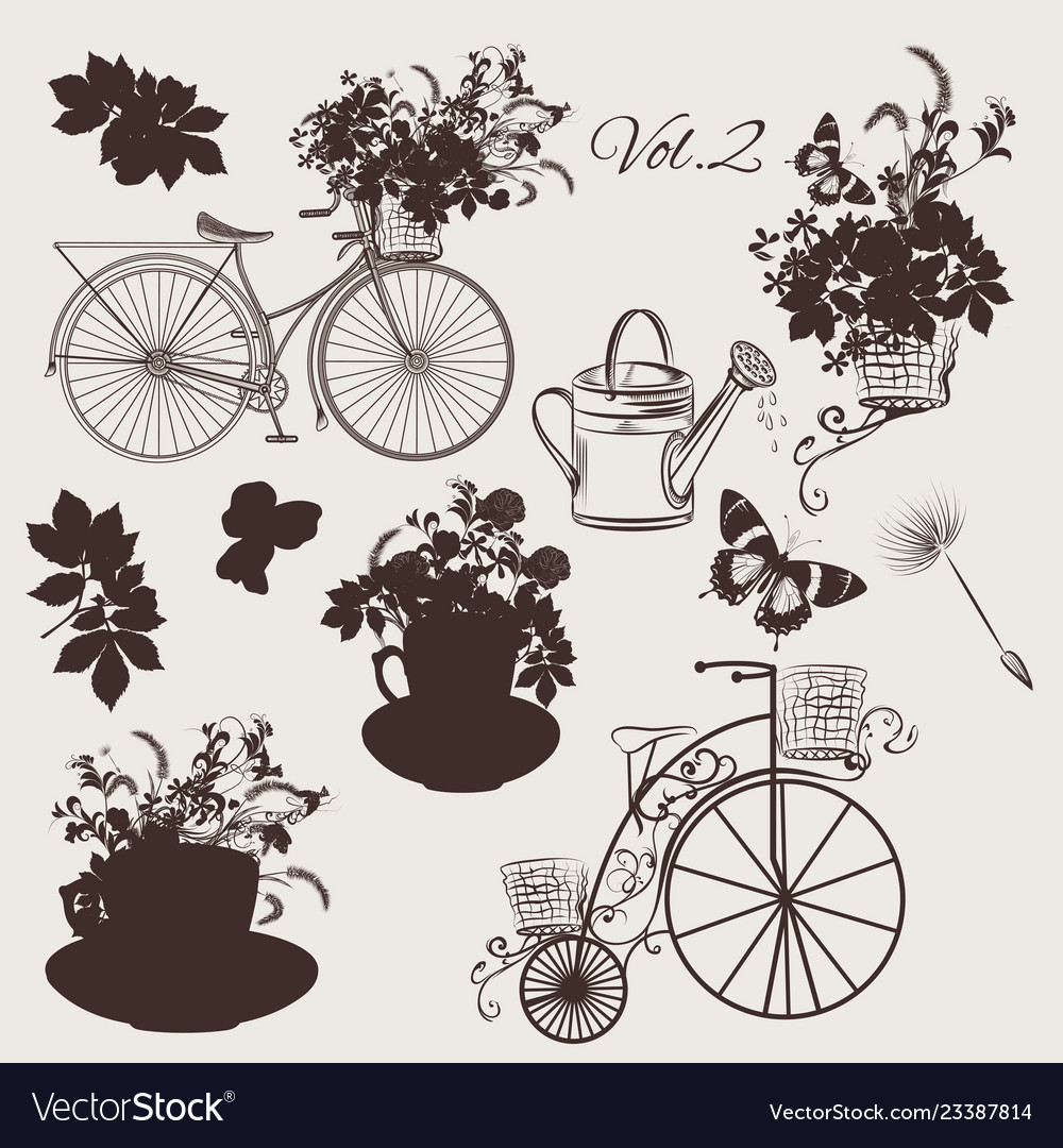 Set of engraved bicycles and garden flowers