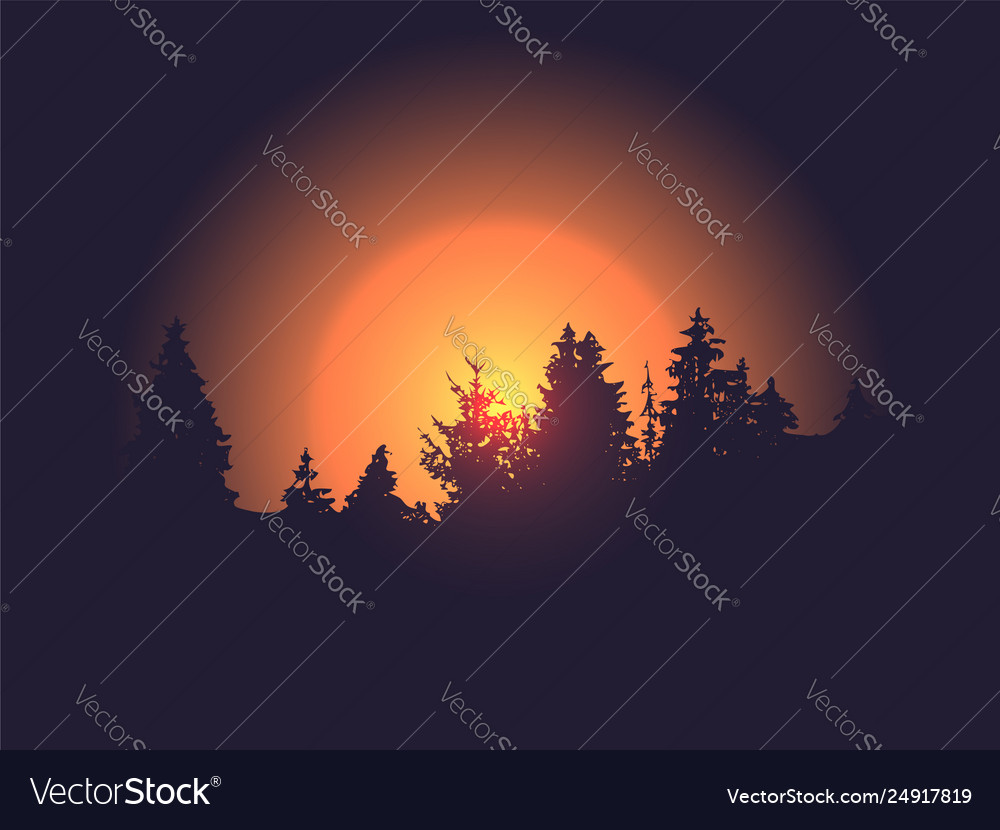 Forest silhouette against sun background