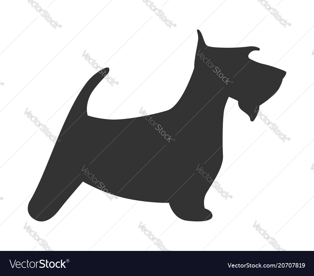 Scotch terrier silhouette dog puppy breed simple