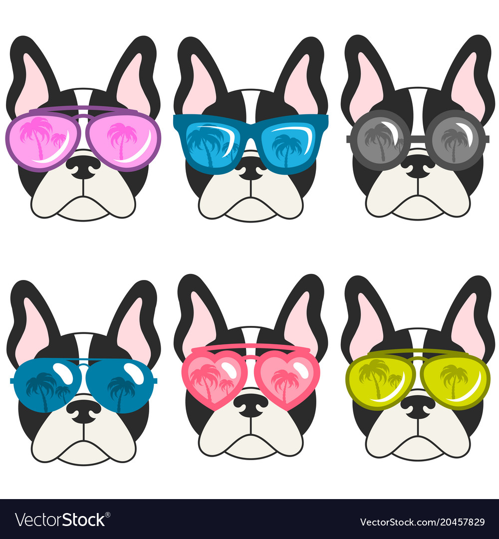 French Bulldogs With Sunglasses Royalty Free Vector Image