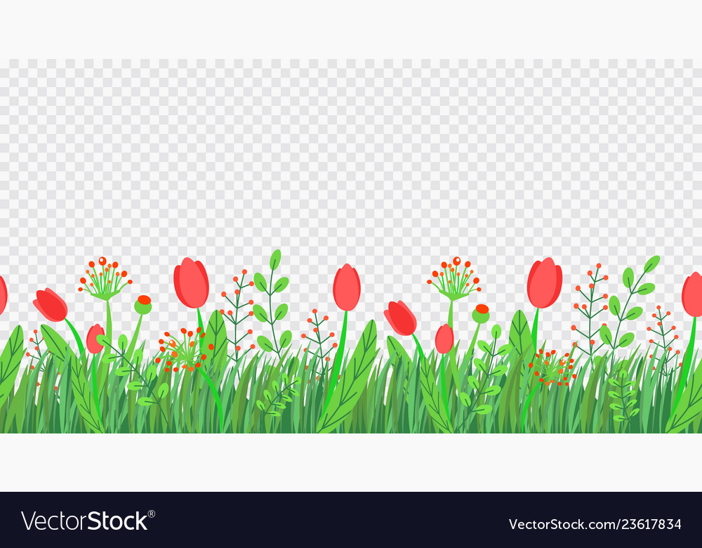 Spring grass seamless border with flowers