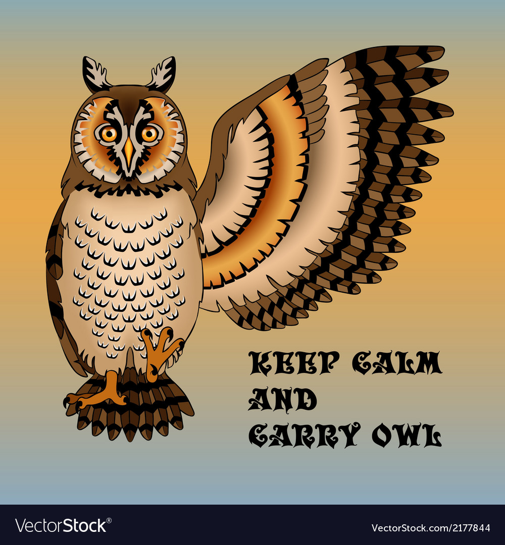 Wise owl lifted wing and paw