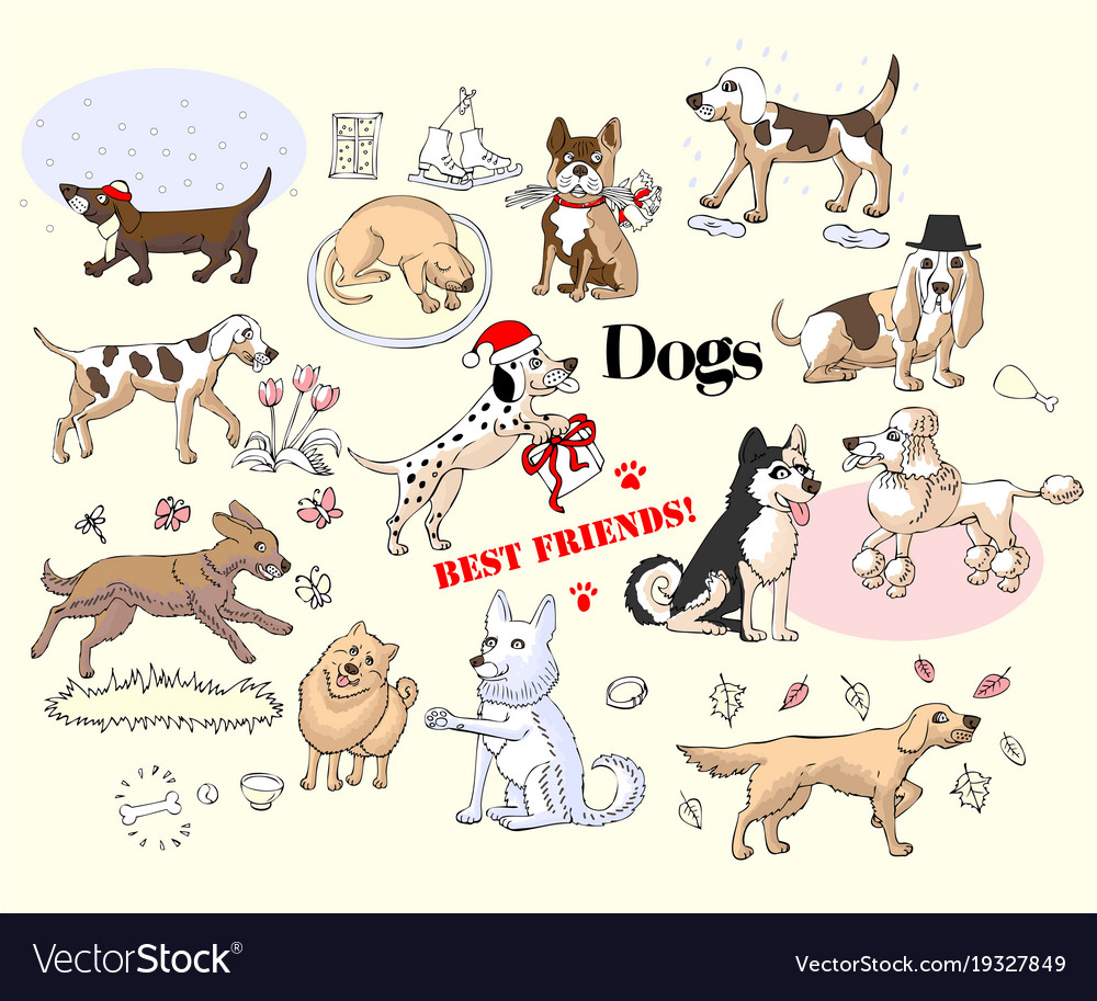 Funny dogs sketches set vector image