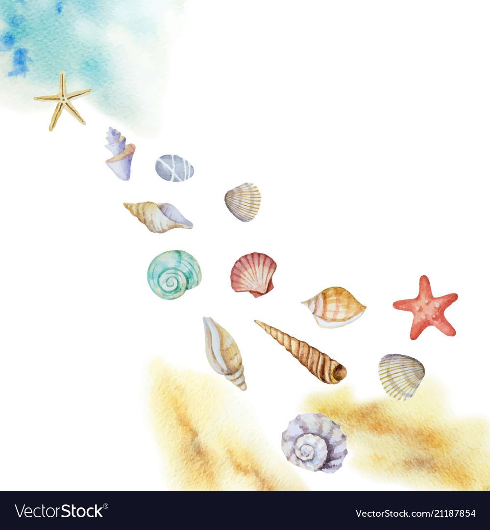 Watercolor multicolored seashells and beach
