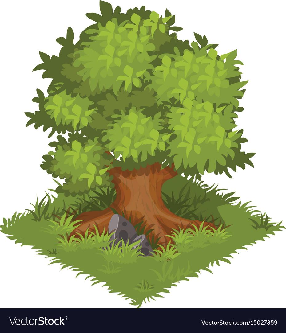 Isometric cartoon gigantic green oak tree