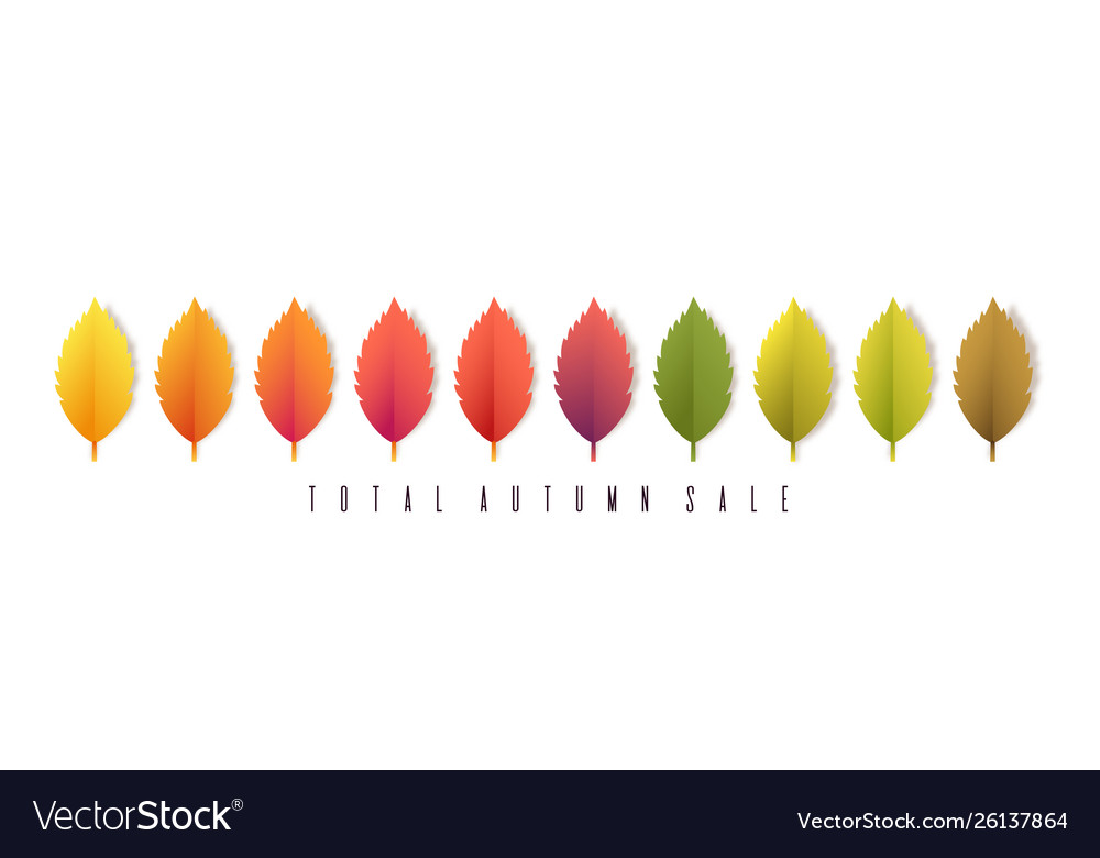 Total autumn sale banner colorful leaves on white