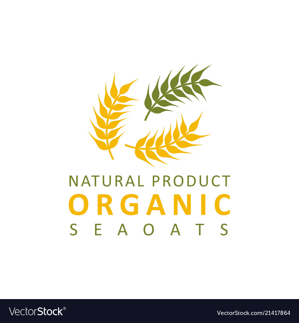 Wheat paddy logo