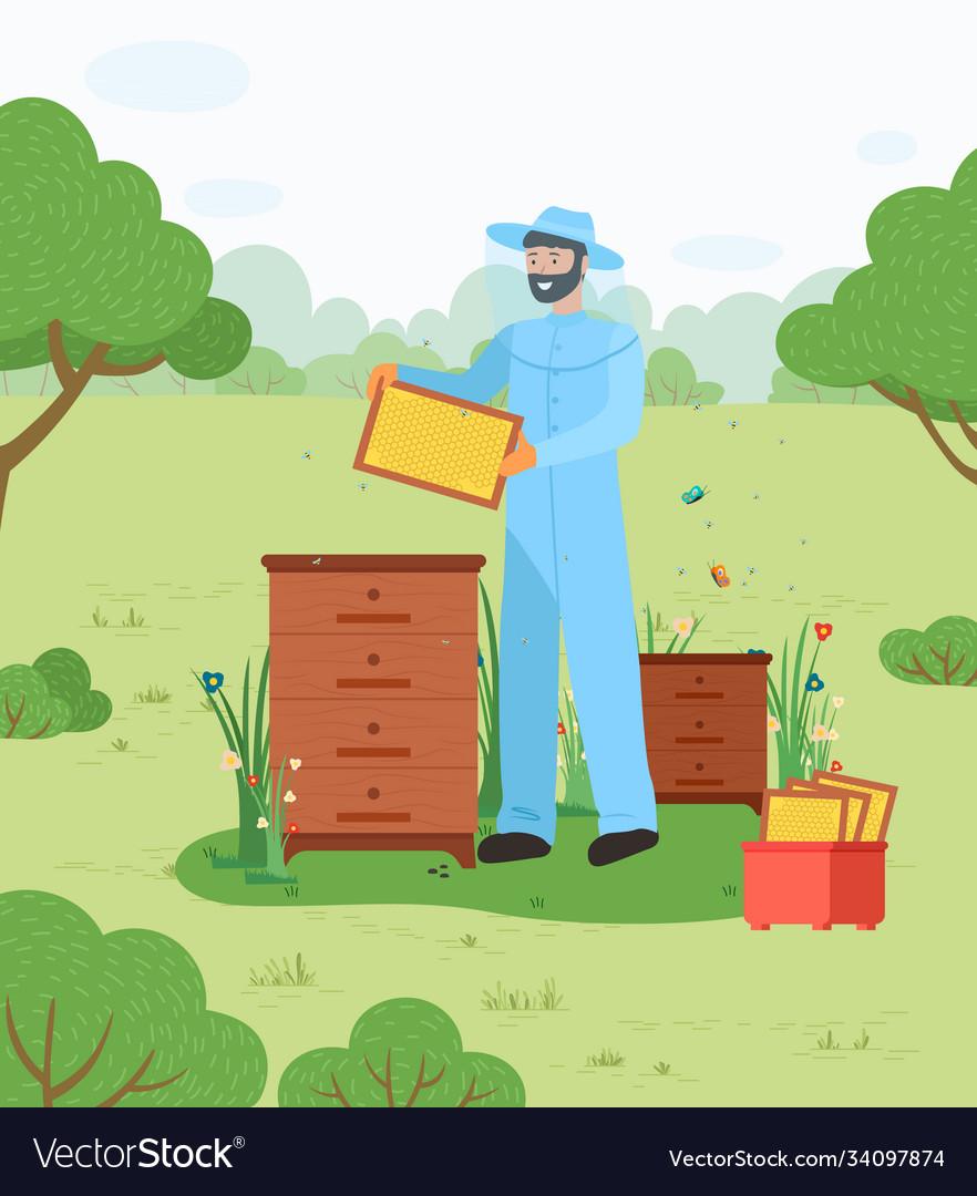 Beekeeper on apiary beekeeping honey bee
