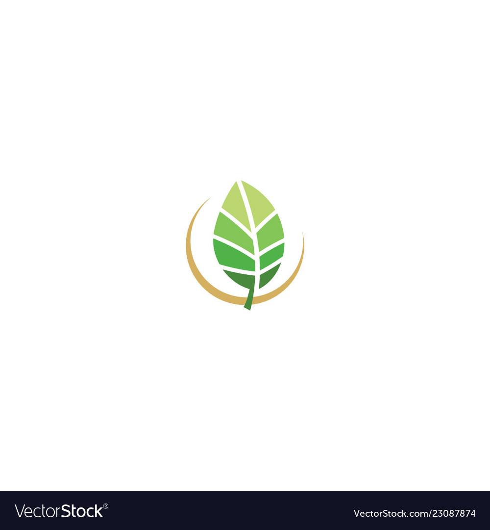 Green leaf organic eco nature logo