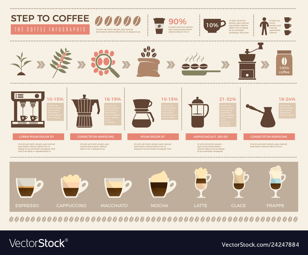 Coffee infographic processes stages of coffee