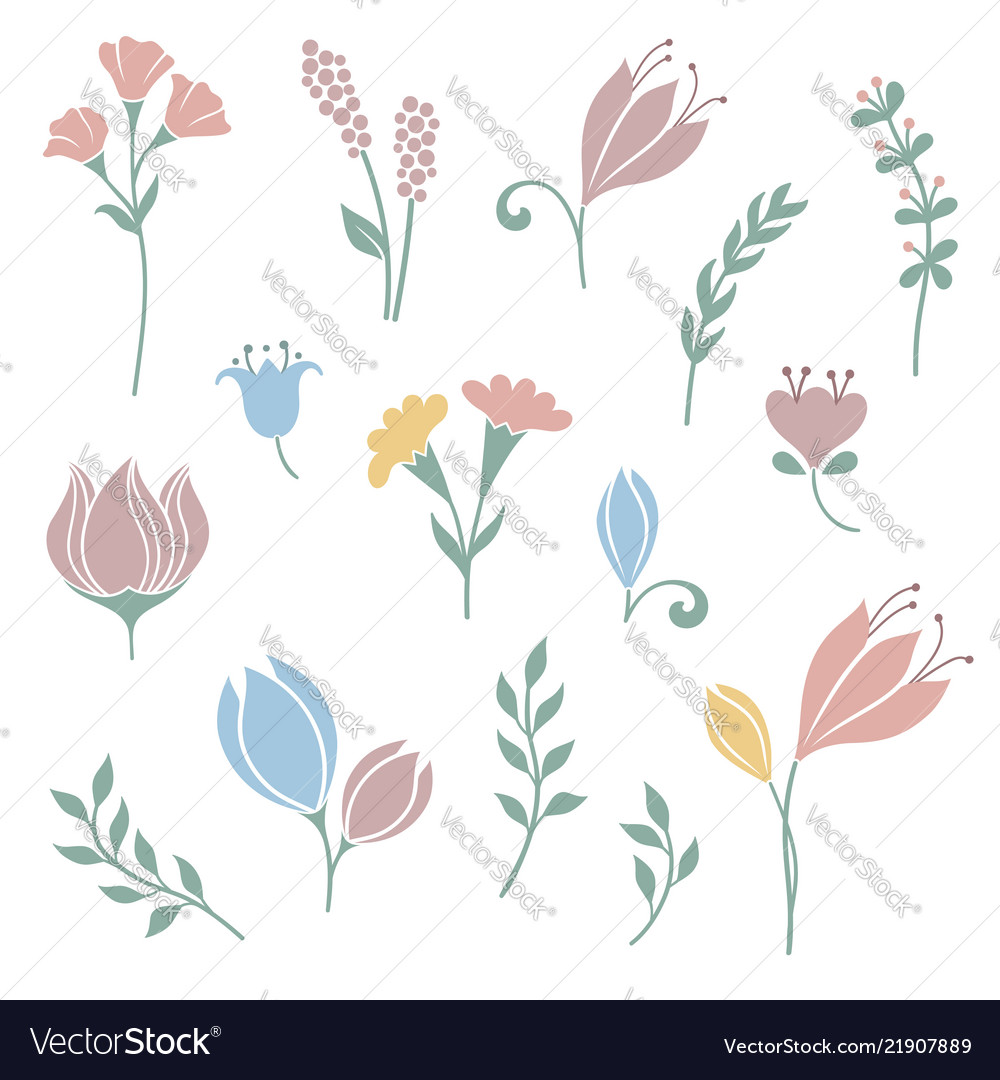 Flowers and floral elements set