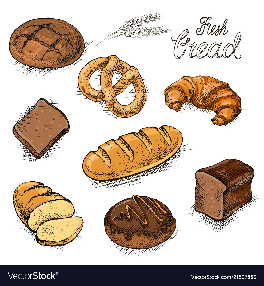 Set of fresh bread and buns hand drawn