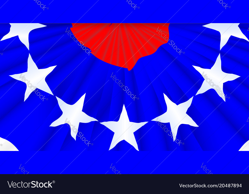 Stars and stripes bunting vector image