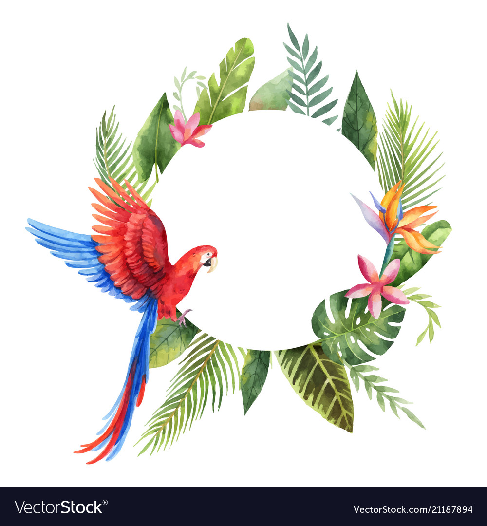 Watercolor frame with red parrot tropical
