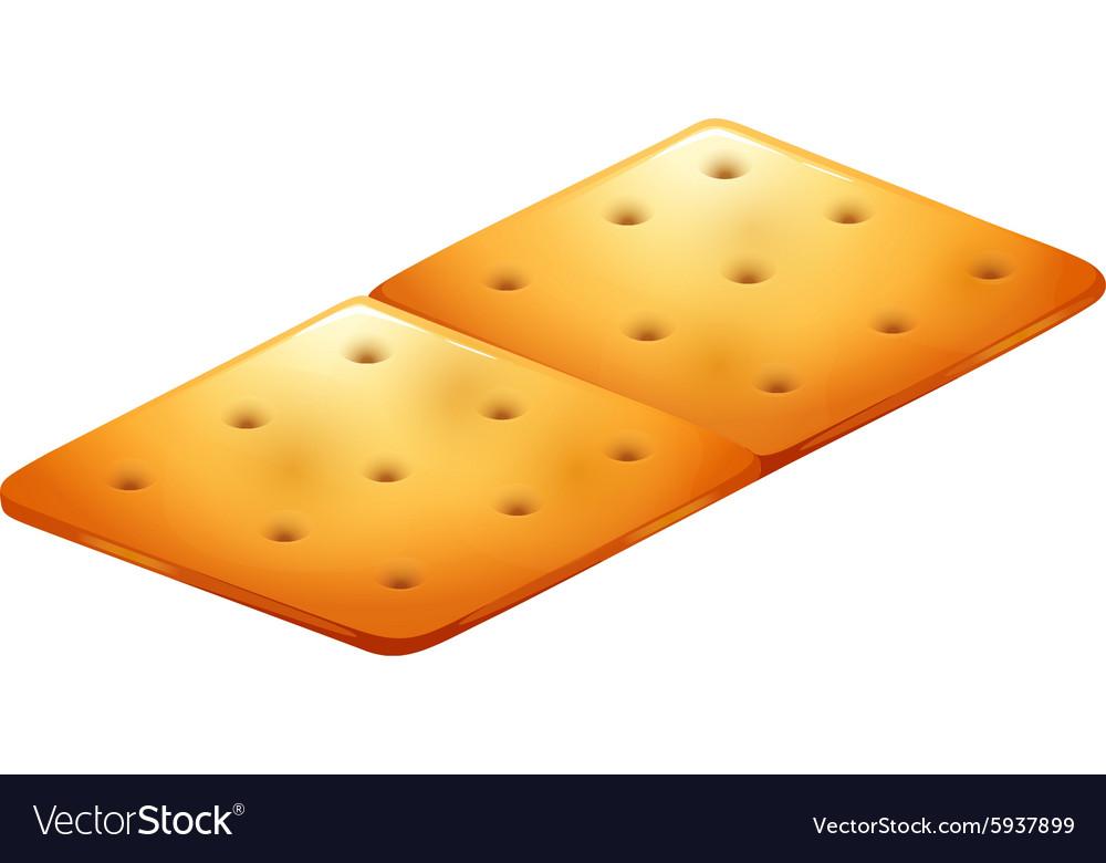 Butter cracker on white vector image