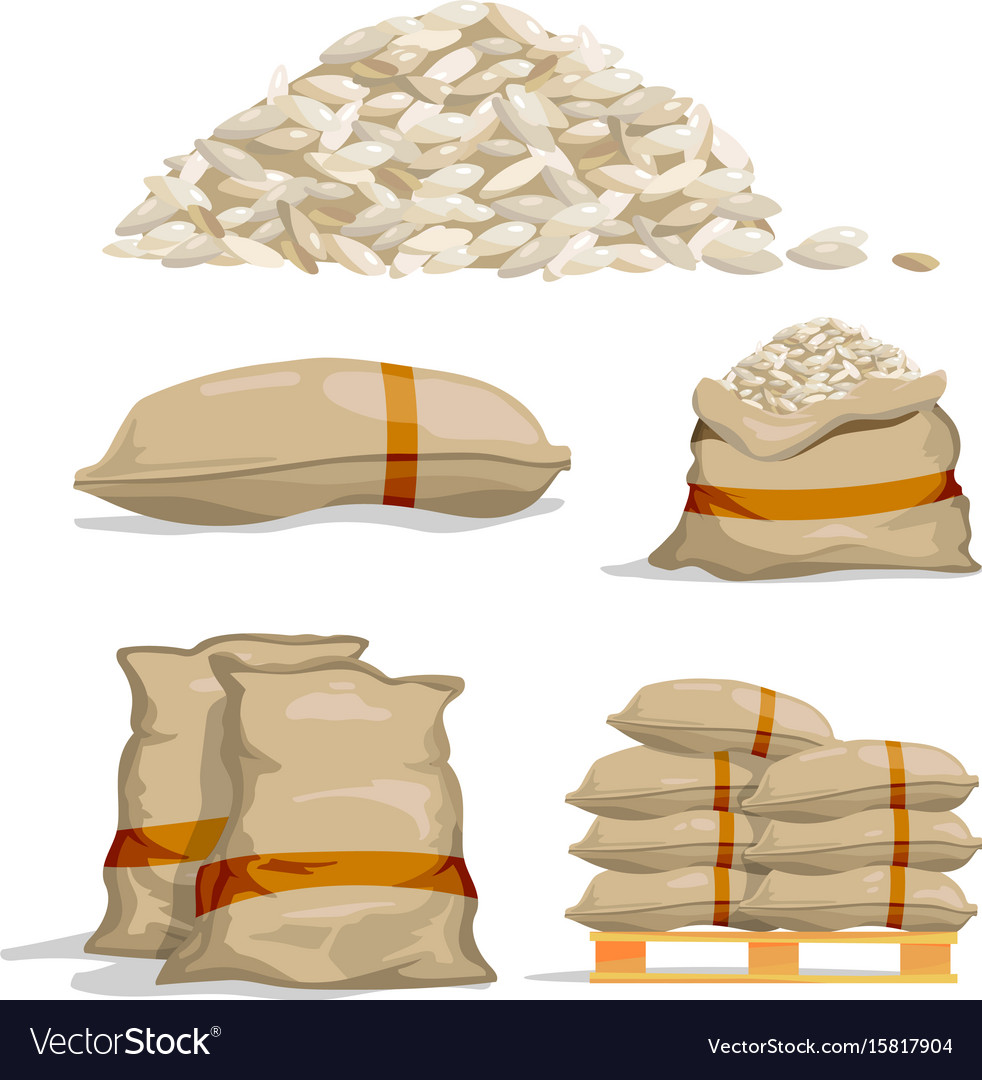 different sacks of white rice food storage vector image