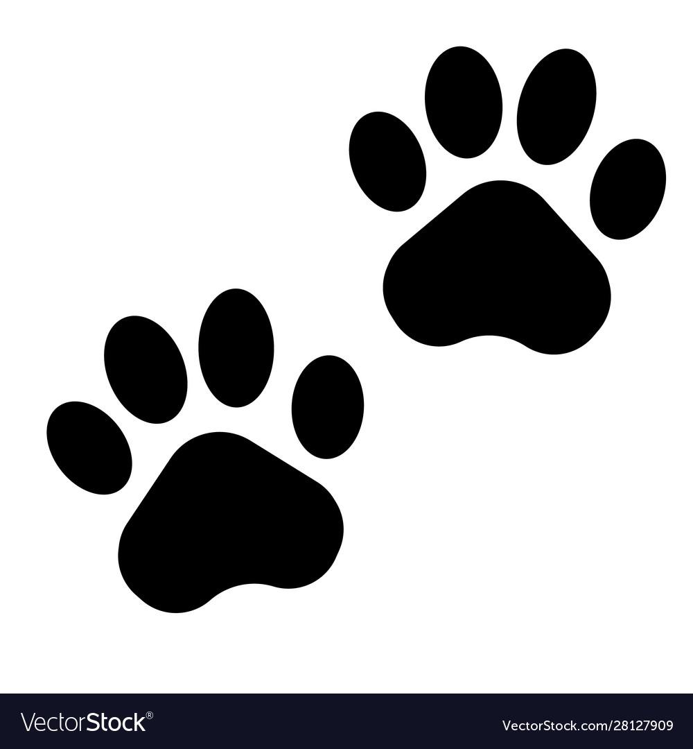Black paw print icon on white background Vector Image